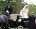 horse-carriage-hire-services-peterborough